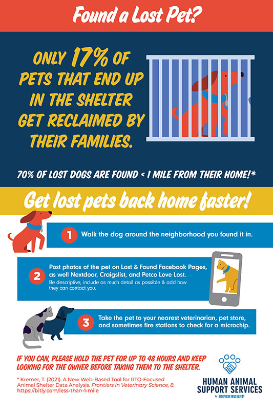 Found a Lost Pet Infographic