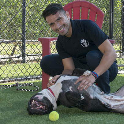 Gabriel at Dallas Animal Services with a dog