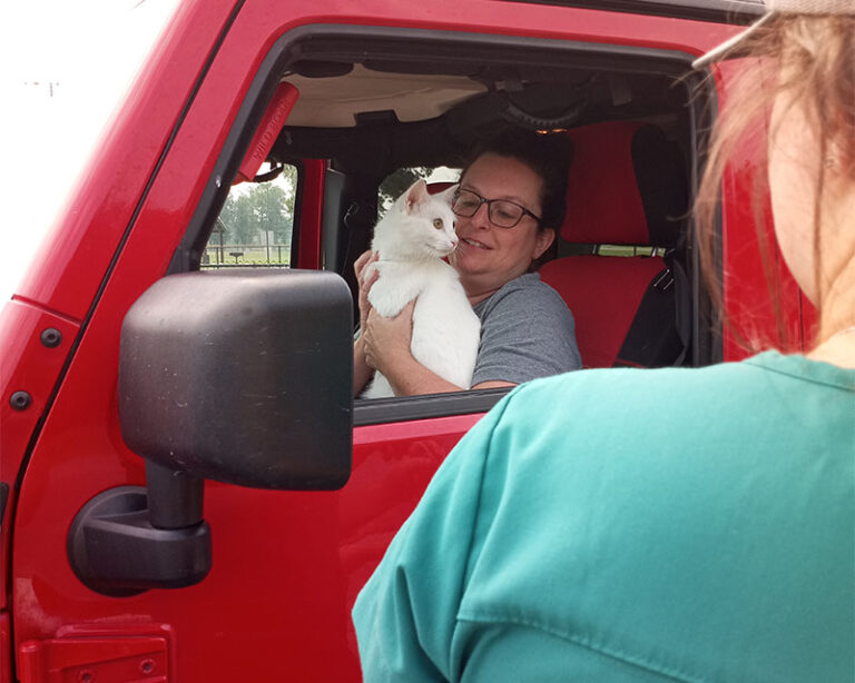 Woman with a cat in a red vehicle. Another woman in a green shirt standing outside with her back to the camera. - Changing the Way We Work