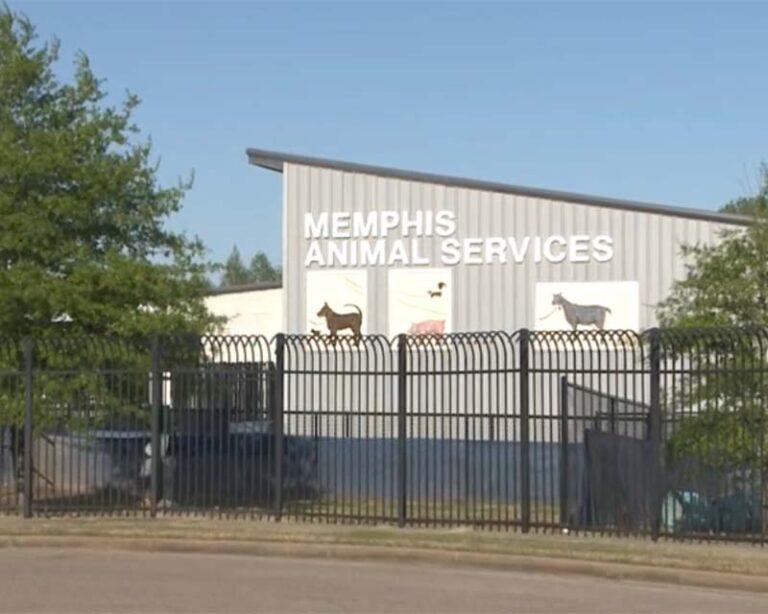 Memphis Animal Services Building