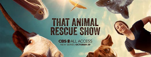 that animal rescue show CBS All Access