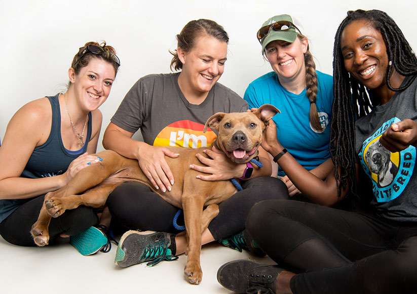 shelter workers hugging pit bull dog on white backdrop